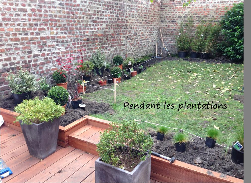 Aménagement d'un jardin à La Madeleine, plantation