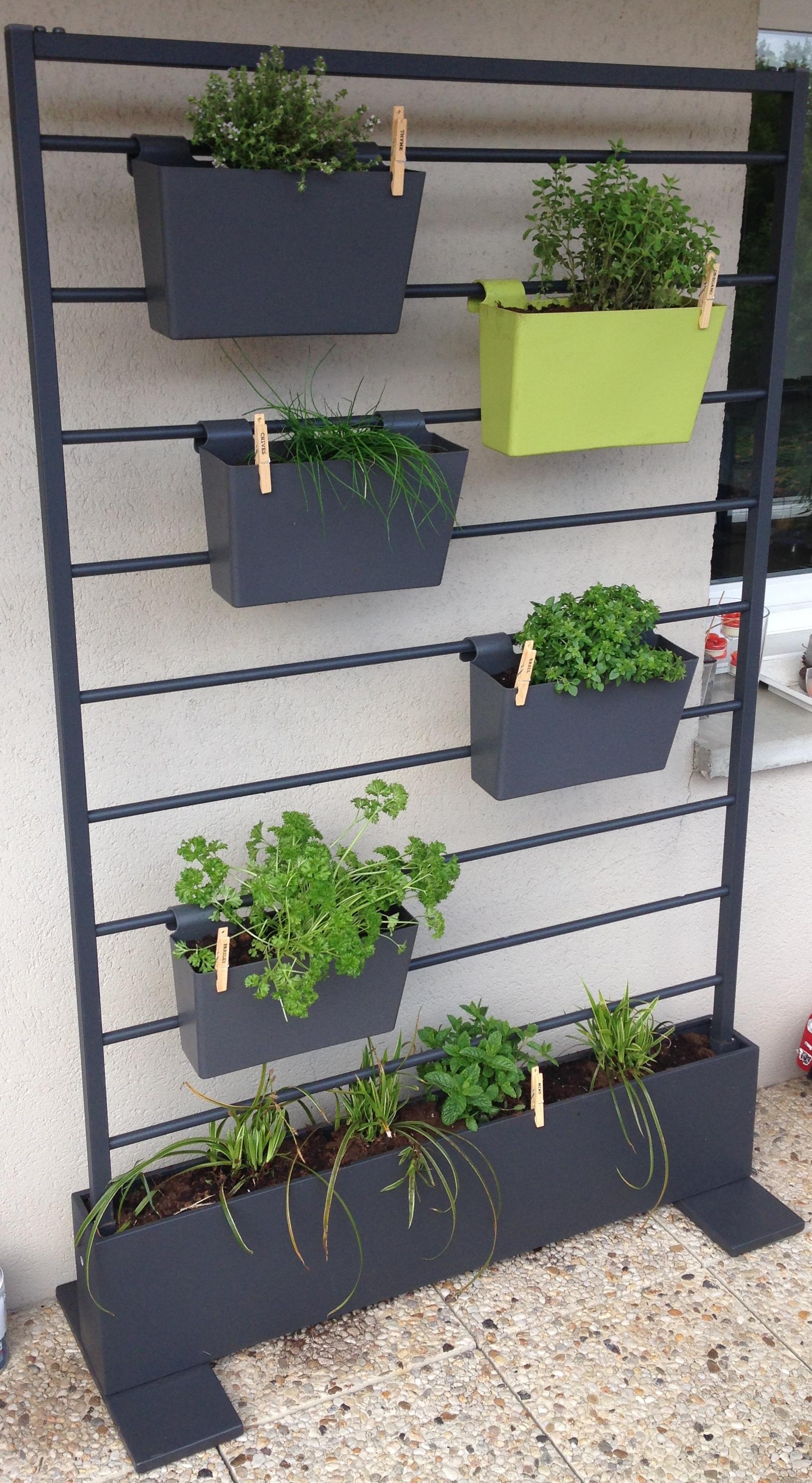 installation d'un jardin aromatique à Lille