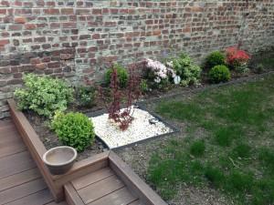 aménagement d'un jardin à La Madeleine 6 mois plus tard