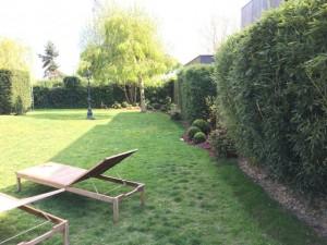 création jardin marquette 6