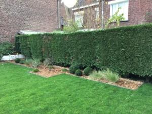 massif bordures droites jardin moderne Marcq en baroeul