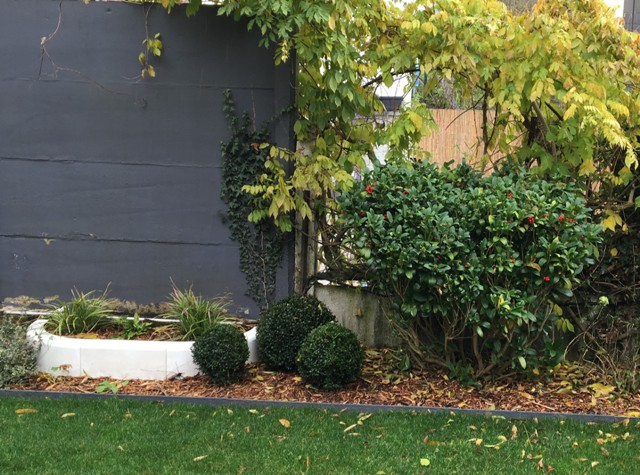 massif d'ombre jardin moderne marcq en baroeul