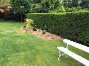 Aménagement jardin Mouvaux (1)