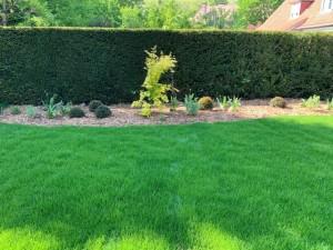Aménagement jardin Mouvaux (3)