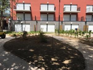 création jardin professionnel lille 4