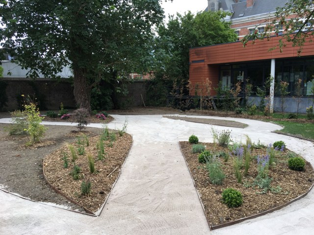 création jardin professionnel lille 5