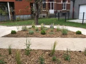 création jardin professionnel lille 8