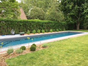 création piscine Mouvaux (1)