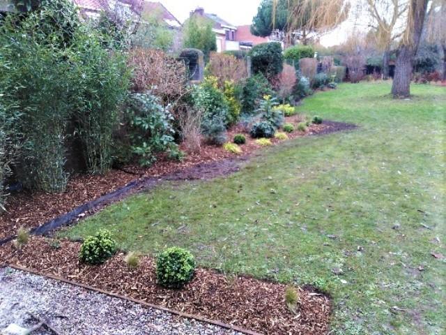 Aménagement jardin près de Lambersart