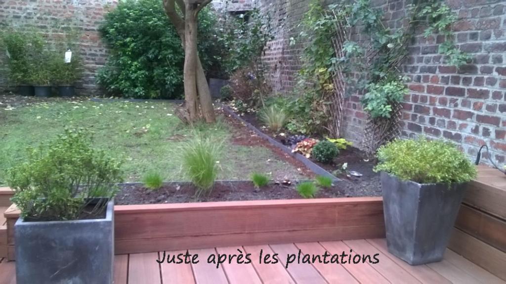 Aménagement d'un jardin à La Madeleine, après plantation