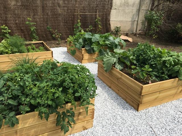 carrés potagers jardin charme moderne près de Lille