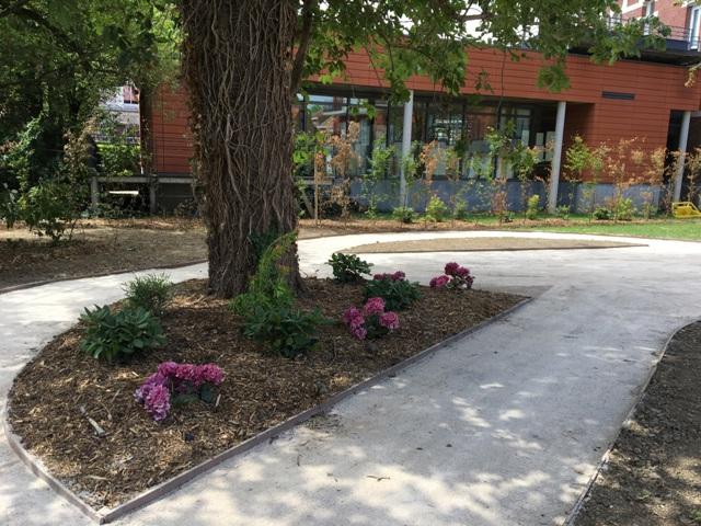 création Jardin professionnel lille 3